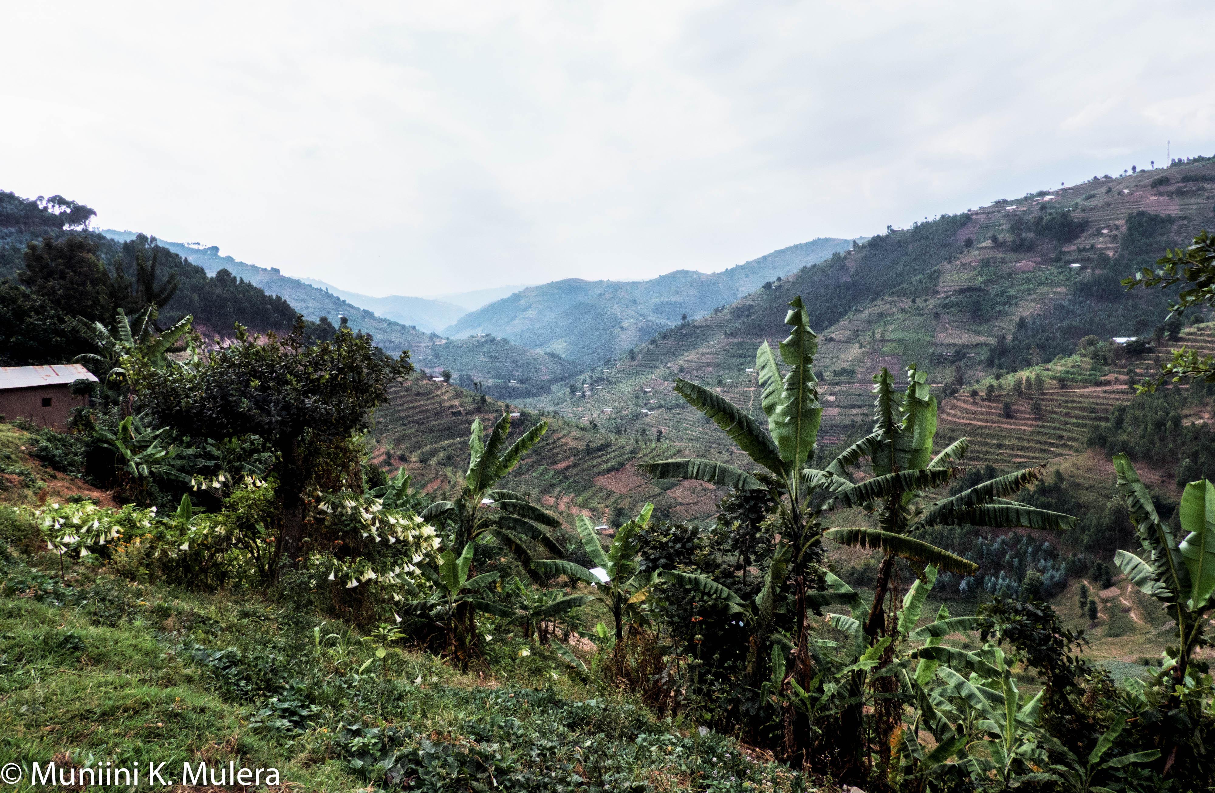 Byumba area Rwanda