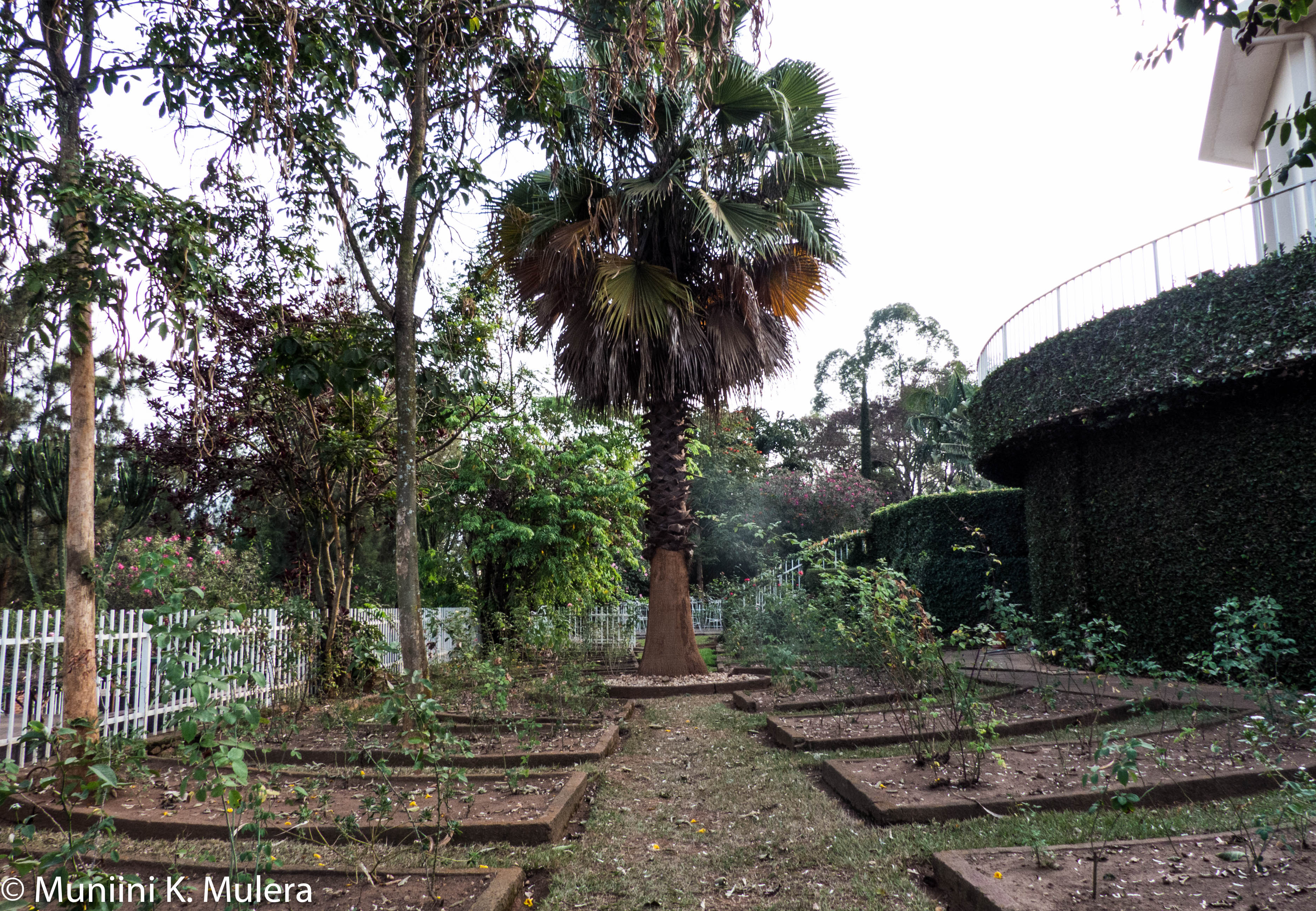 Genocide Memorial Garden Kigali _