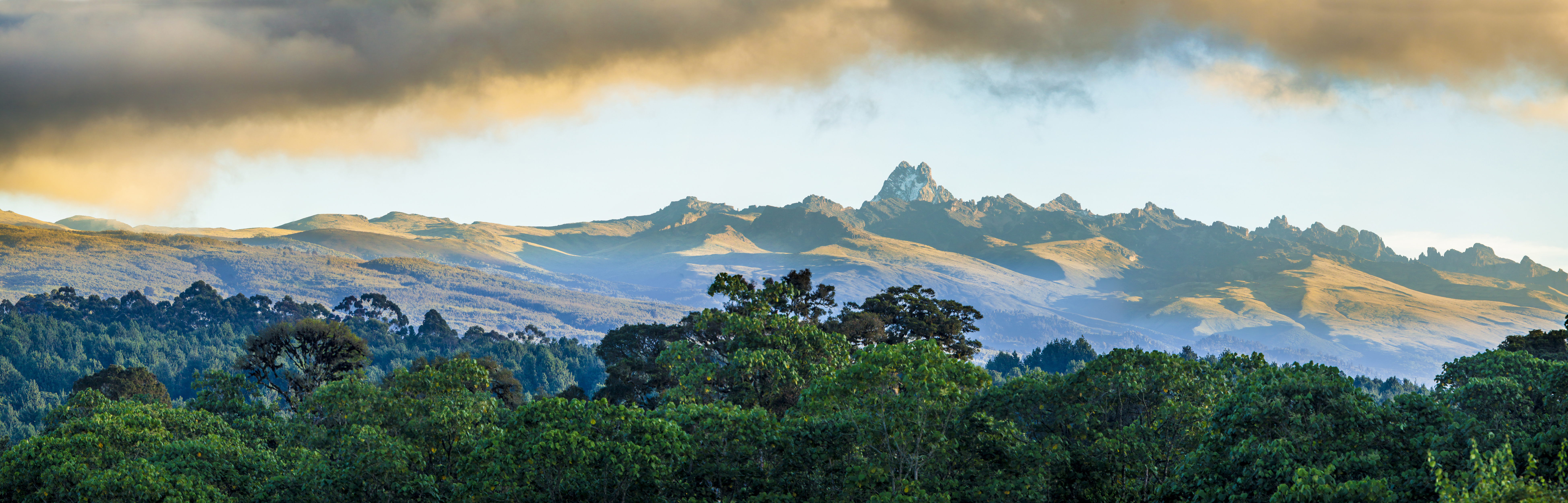 wide panorama of mount Kenya at dawn