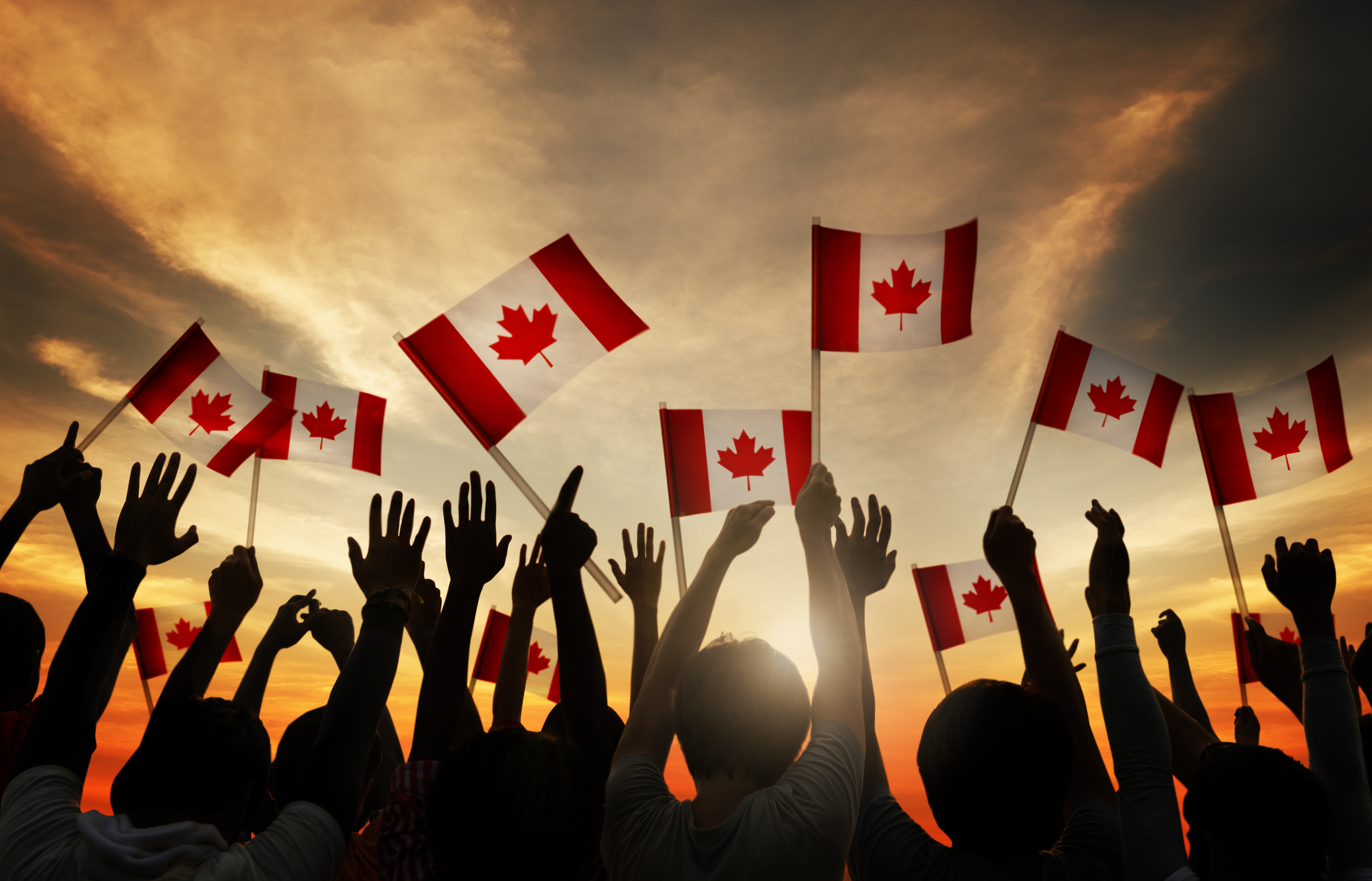 Group of People Waving Canada Flags