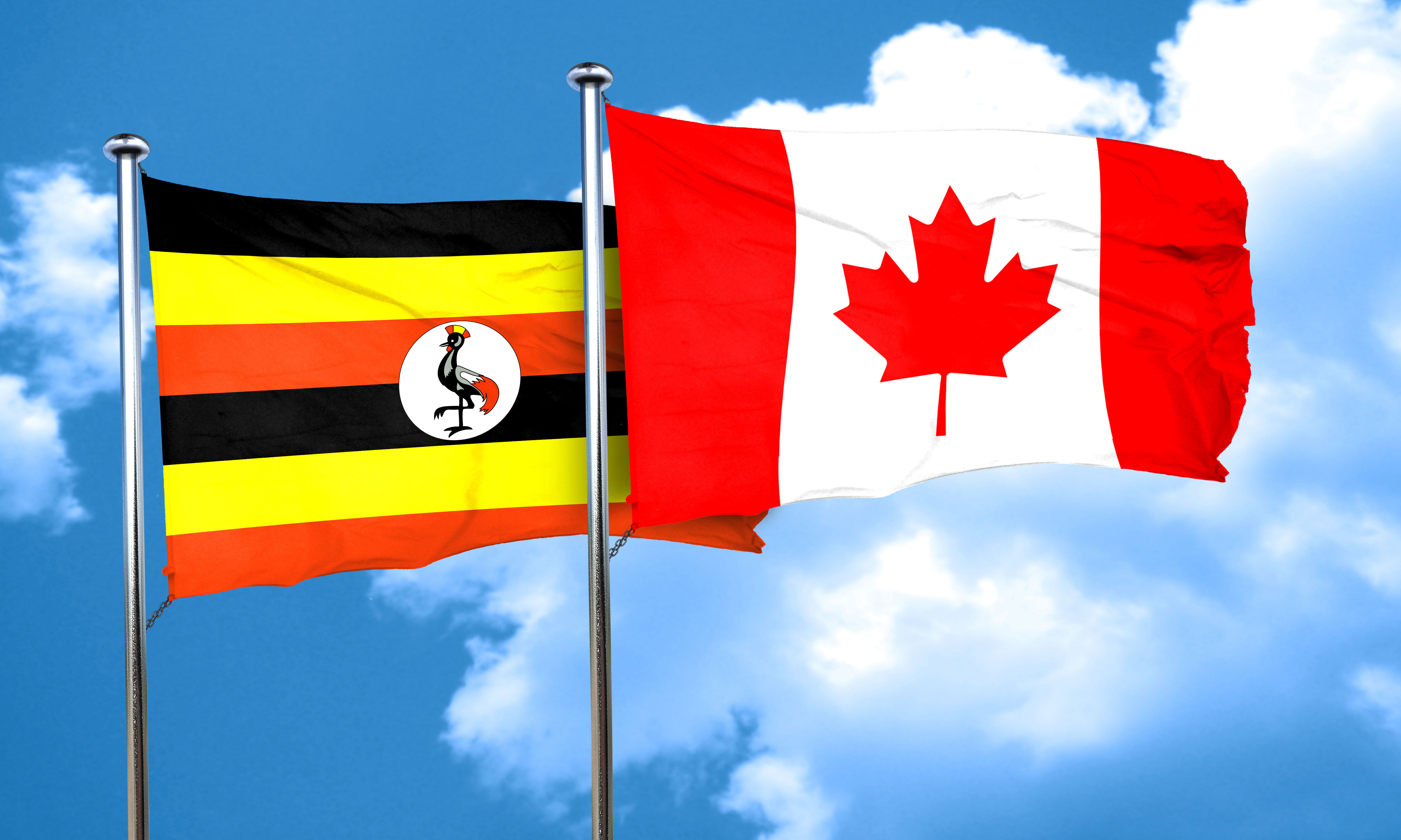 Uganda flag with Canada flag, 3D rendering
