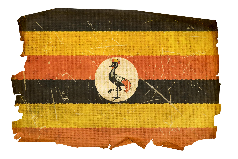 What was Uganda's Kale Kayihura thinking?